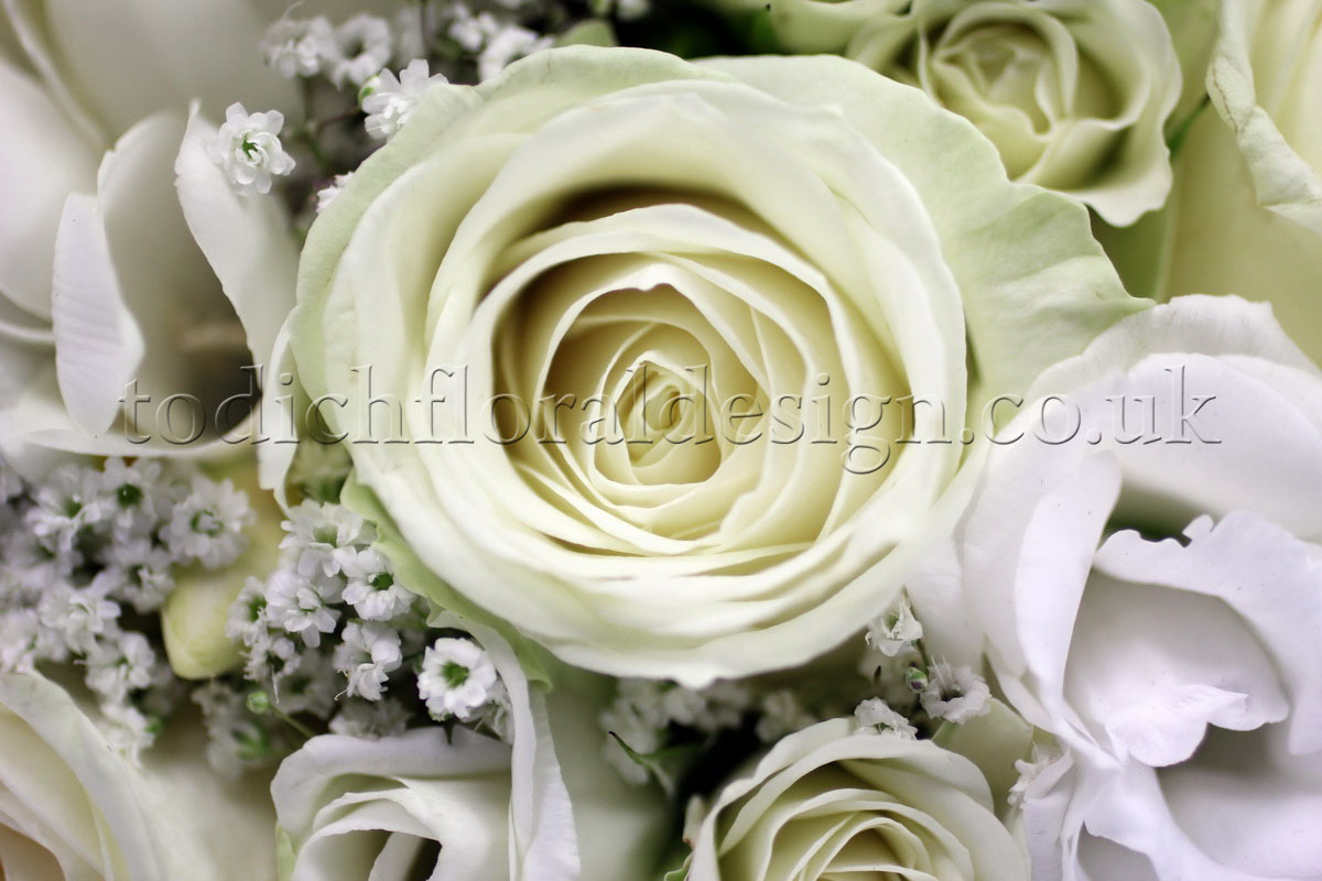 White Wedding Flowers July : July wedding flowers archives