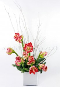 Christmas Amaryllis design