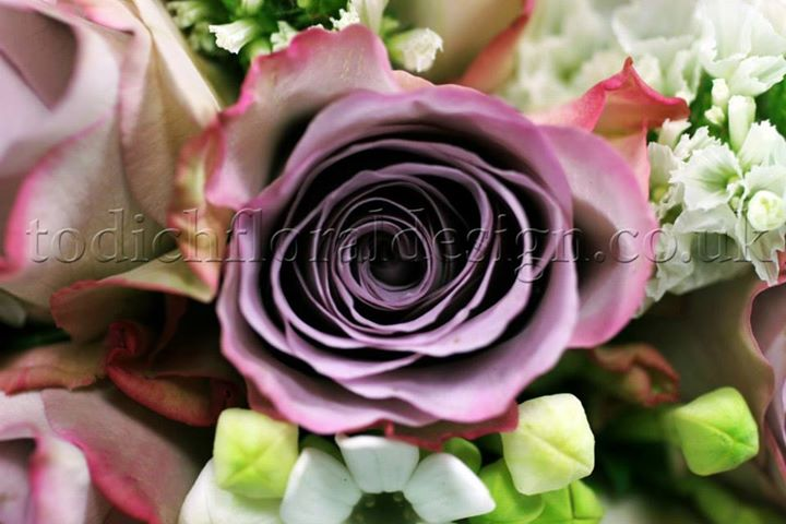 purple-bridal-bouquets-wedding-flowers-for-summer-roses-wedding-bouquets