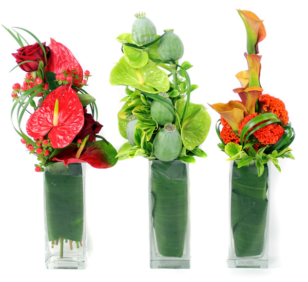 anthurium flowers and anthurium flower arrangement london
