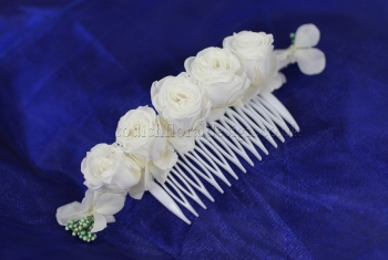 Headdress021