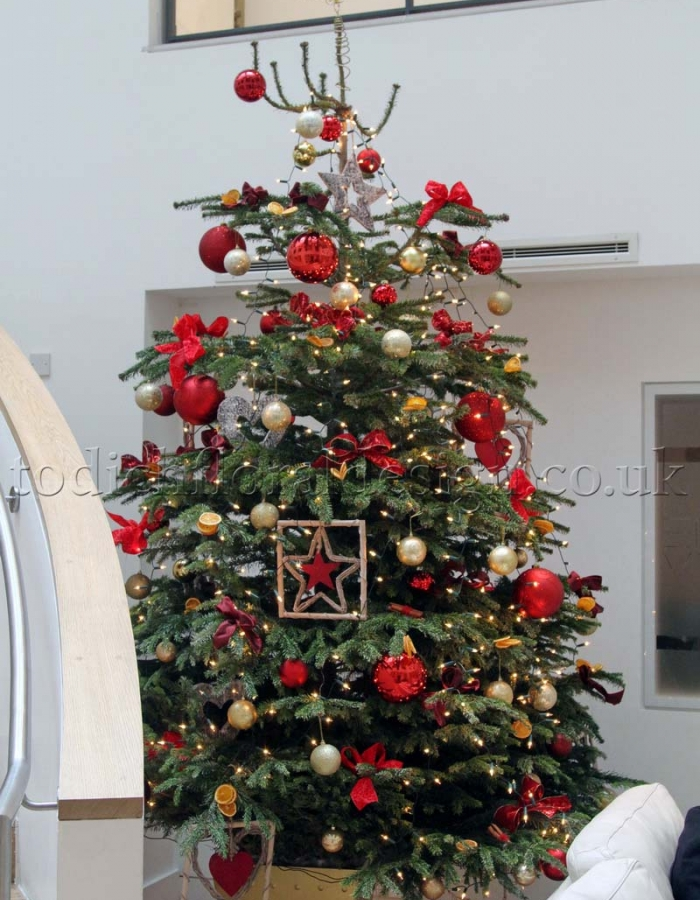 click on image to enlarge - Real Christmas Tree Decorated