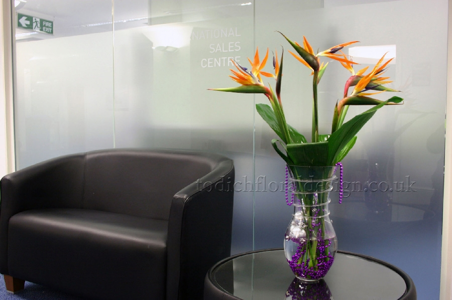 Exotic Tropical Flowers Top Corporate Florist London